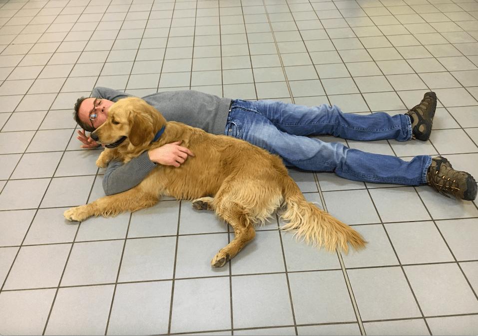 Seizure alert dog training